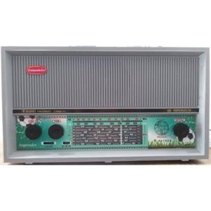 Rádio de Mesa Companheiro CRMIF-91